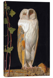 Lærredsbillede  The White Owl - William James Webbe