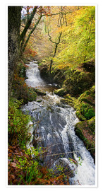 Premium-plakat Lynmouth river woodland