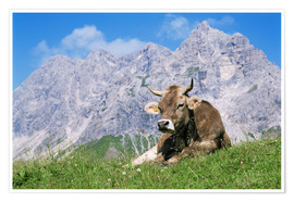 Premium-plakat Cow on a mountain meadow