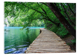 Akrylbillede  Plitvice Lakes National Park Boardwalk - Renate Knapp