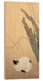 Print på træ  Cat and plum blossoms - Hishida Shunso