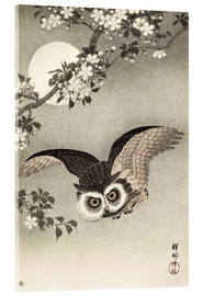 Akrylbillede  Scops Owl in Flight, Cherry Blossoms and Full Moon - Ohara Koson