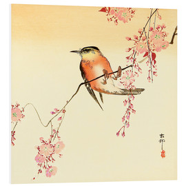 Print på skumplade  Red Bird and Cherry Blossoms - Ohara Koson