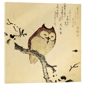 Akrylbillede  Owl on a Flowering Magnolia Branch - Kubota Shunman