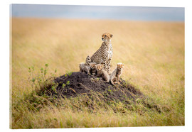 Akrylbillede  Leopard mother - Ted Taylor