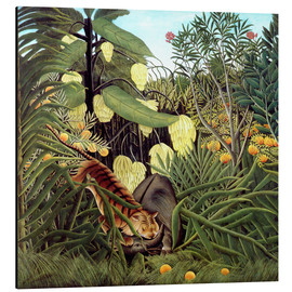 Print på aluminium  Combat of tiger and buffalo - Henri Rousseau