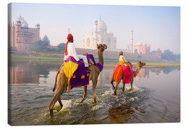 Lærredsbillede  Camel riders at the Taj Mahal - Gavin Hellier