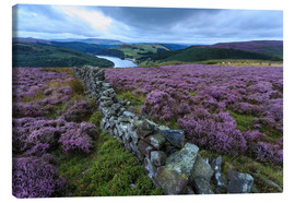 Lærredsbillede  Heather covered Bamford Moor and dry stone wall - Eleanor Scriven