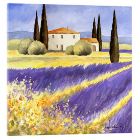 Akrylbillede  Light of Provence - Franz Heigl