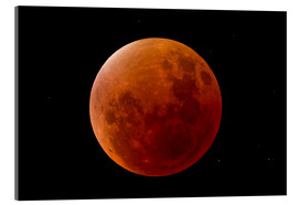 Akrylbillede  Blood Moon September 2015 - MonarchC