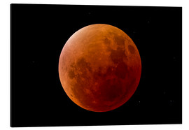Print på aluminium  Blood Moon September 2015 - MonarchC