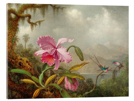 Akrylbillede  Cattleya Orchid and Three Hummingbirds - Martin Johnson Heade