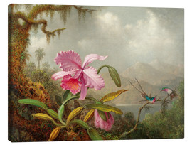 Lærredsbillede  Cattleya Orchid and Three Hummingbirds - Martin Johnson Heade