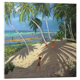 Akrylbillede  Palm trees, Clovelly beach, Barbados - Andrew Macara