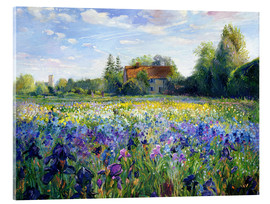 Akrylbillede  Field of flowers in the sunset - Timothy Easton