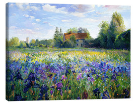Lærredsbillede  Field of flowers in the sunset - Timothy Easton