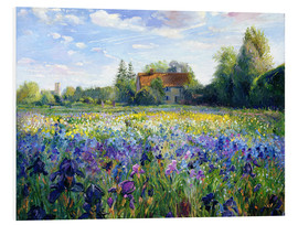 Print på skumplade  Field of flowers in the sunset - Timothy Easton