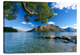 Lærredsbillede  Queenstown New Zealand - Thomas Hagenau