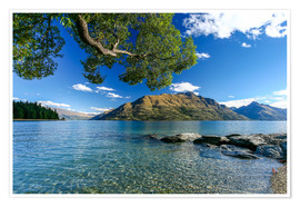 Premium-plakat Queenstown New Zealand