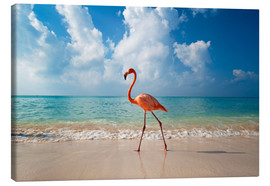 Lærredsbillede  Flamingo on the beach - Ian Cuming