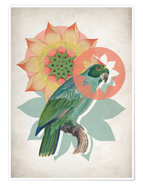 Premium-plakat  The happy lotus - Mandy Reinmuth