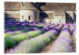 Akrylbillede  Famous Senanque abbey with its lavender field, Provence, France - Matteo Colombo