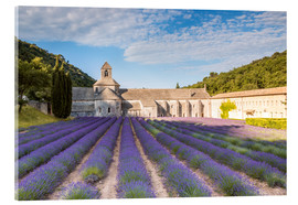 Akrylbillede  Famous Senanque abbey with lavender field, Provence, France - Matteo Colombo
