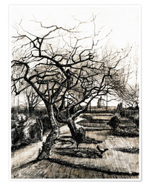 Premium-plakat  The Parsonage Garden at Nuenen in Winter - Vincent van Gogh