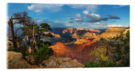 Akrylbillede  Grand Canyon with knotty pine - Michael Rucker