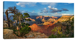 Lærredsbillede  Grand Canyon with knotty pine - Michael Rucker