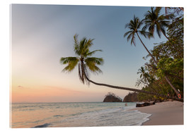 Akrylbillede  Palm tree and exotic sandy beach at sunset, Costa Rica - Matteo Colombo
