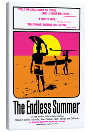 Lærredsbillede  The Endless Summer - Entertainment Collection