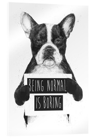 Akrylbillede  Being normal is boring - Balazs Solti