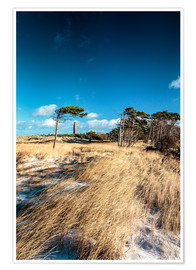 Premium-plakat Dunes and Lighthouse at the Baltic Sea