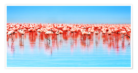 Premium-plakat  Flamingo in the lake Nakuru
