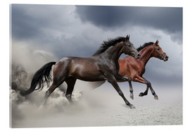 Akrylbillede  Horses in the storm