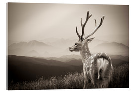 Akrylbillede  Stag in the mountains