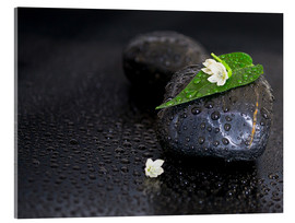 Akrylbillede  Black stones with leaf