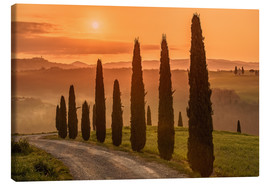 Lærredsbillede  Golden Morning - Tuscany - Achim Thomae