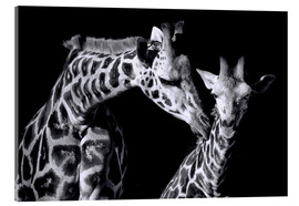 Akrylbillede  Mother and child giraffe - Sabine Wagner