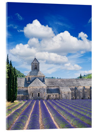 Akrylbillede  Sénanque abbey with lavender field, Provence, France