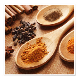 Premium-plakat Herbs and spices on wood
