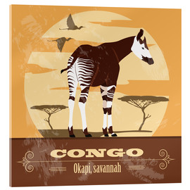 Akrylbillede  Congo - Okapi - Kidz Collection