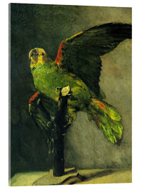 Akrylbillede  The green parrot - Vincent van Gogh