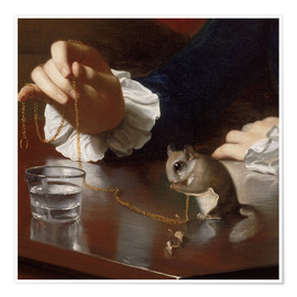 Premium-plakat  Boy with a Flying Squirrel (Detail) - John Singleton Copley