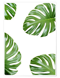 Premium-plakat  Attack of the Monstera - Finlay and Noa