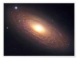 Premium-plakat NGC 2841, spiral galaxy in Ursa Major.