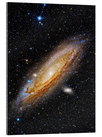 Akrylbillede  Messier 31, the Andromeda Galaxy. - Roberto Colombari