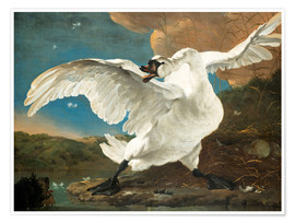 Premium-plakat  The Threatened Swan - Jan Asselijn