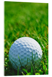 Akrylbillede  Golf ball in the grass